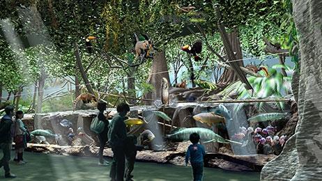 雨林探險 Rainforest Adventure